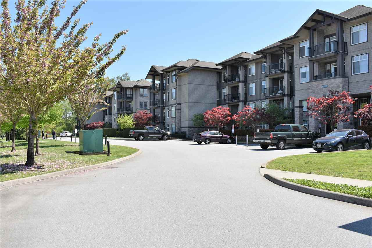 """Main Photo: 421 12258 224TH Street in Maple Ridge: East Central Condo for sale in """"Stonegate"""" : MLS®# R2265766"""
