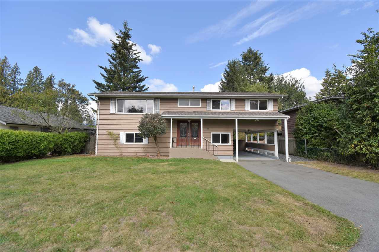 Main Photo: 21635 123 Avenue in Maple Ridge: Northwest Maple Ridge House for sale : MLS®# R2302792