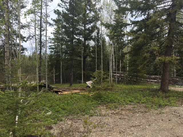 Photo 4: Photos: 1424 WINWORD Road in Quesnel: Bouchie Lake Manufactured Home for sale (Quesnel (Zone 28))  : MLS®# R2457689