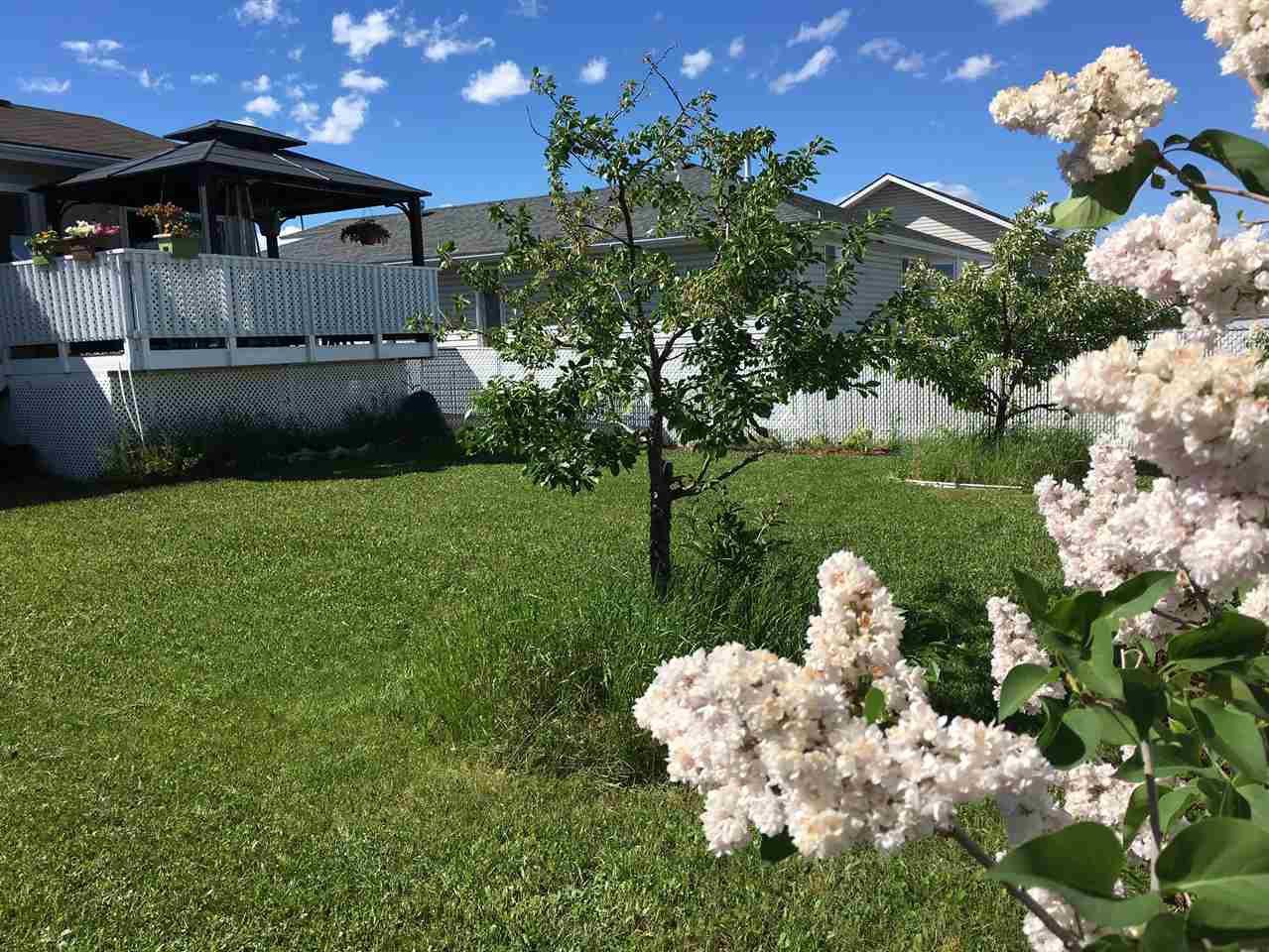 Photo 17: Photos: 10603 90 Street in Fort St. John: Fort St. John - City NE House for sale (Fort St. John (Zone 60))  : MLS®# R2406620