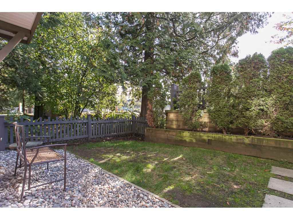 "Photo 19: Photos: 21 20875 80 Avenue in Langley: Willoughby Heights Townhouse for sale in ""Pepperwood"" : MLS®# R2113758"