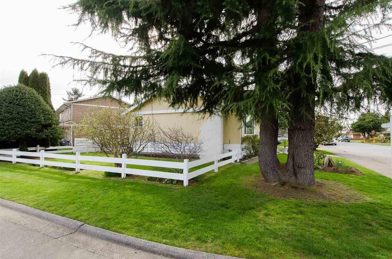 Photo 18: Photos: 5546 45 Avenue in Delta: Delta Manor House for sale (Ladner)  : MLS®# R2046612