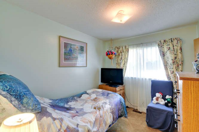 Photo 15: Photos: 15506 19 Avenue in Surrey: King George Corridor House for sale (South Surrey White Rock)  : MLS®# R2200836