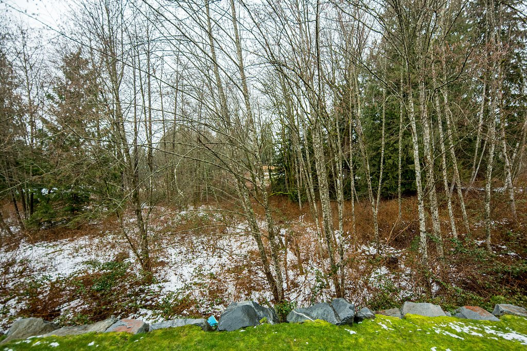 """Photo 13: Photos: 22956 134 Loop in Maple Ridge: Silver Valley House for sale in """"HAMPSTEAD"""" : MLS®# R2243518"""