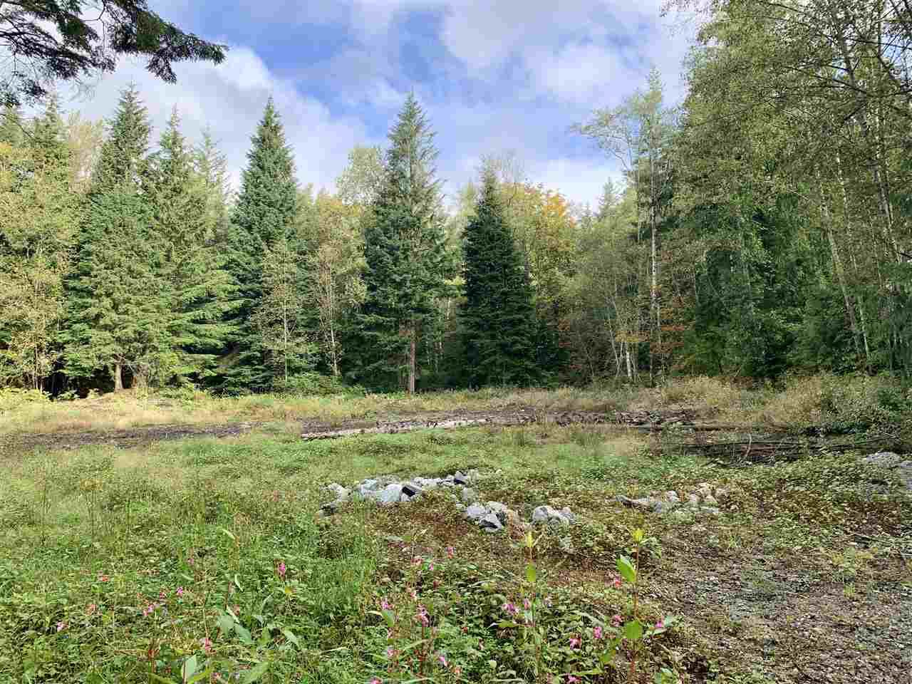 Main Photo: LOT 2 30331 BERG Avenue in Mission: Stave Falls Land for sale : MLS®# R2396669