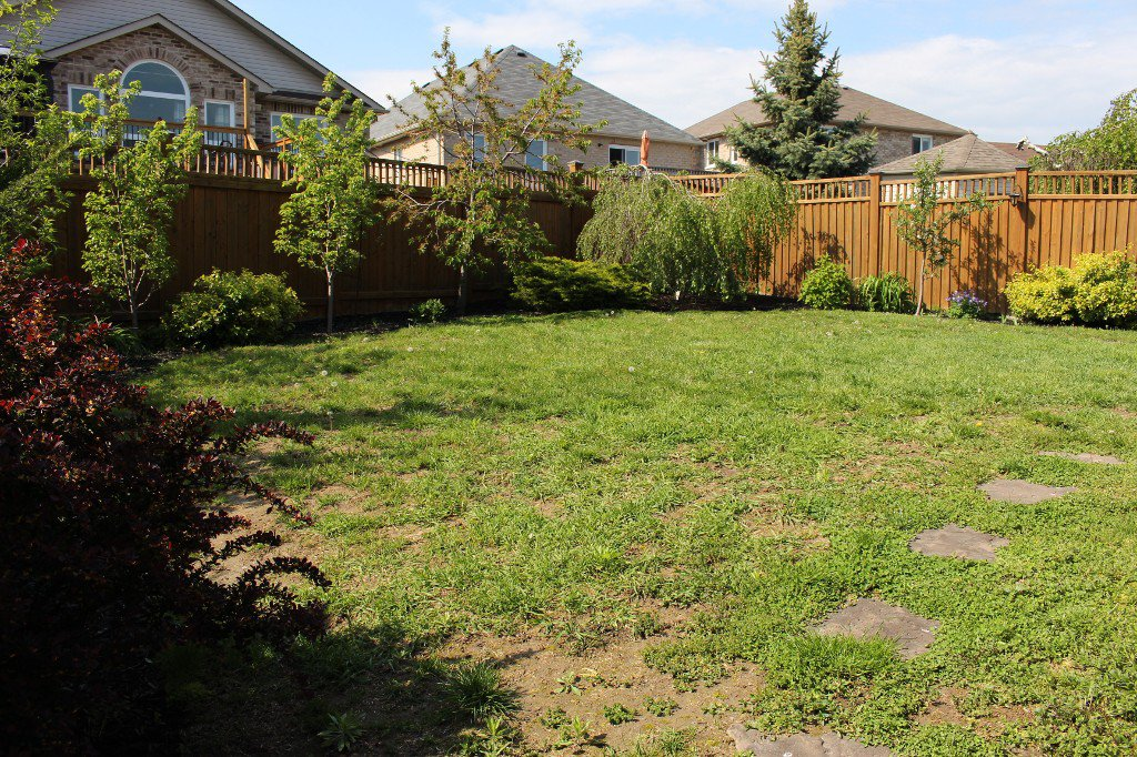 Photo 27: Photos: 270 Ivey Crescent in Cobourg: House for sale : MLS®# 512440137