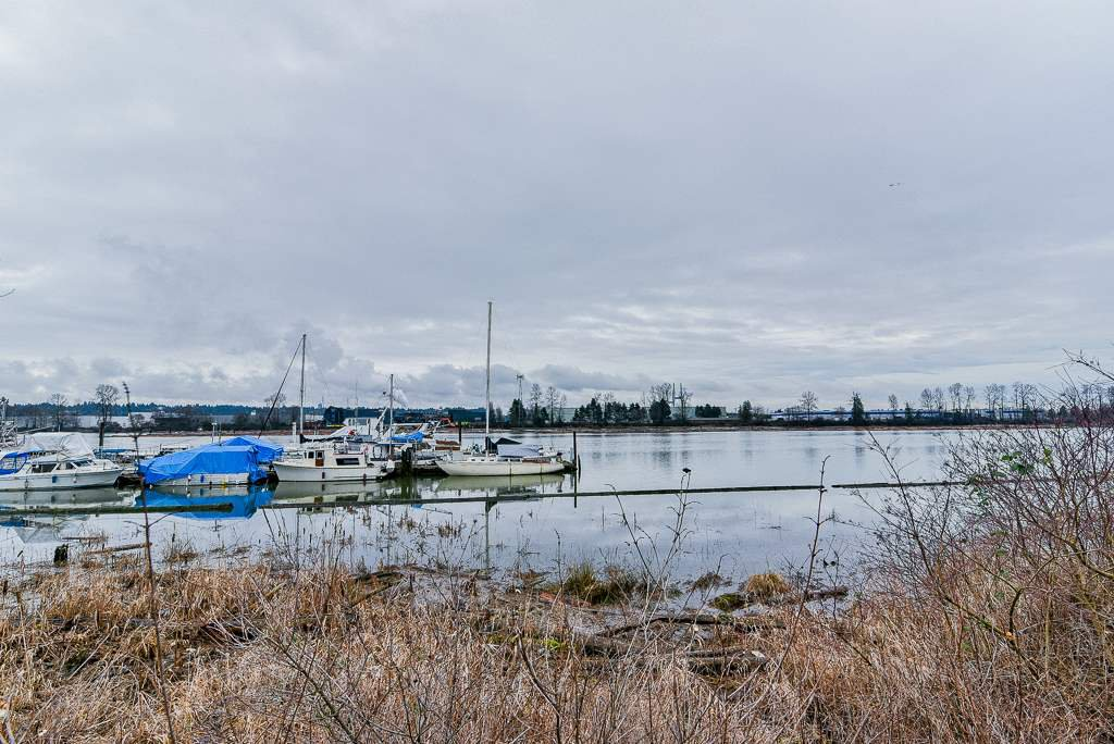 Photo 18: Photos: 1219 SOUTH DYKE Road in New Westminster: Queensborough House for sale : MLS®# R2238163
