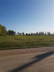 Main Photo: 0 Balgona Road in Winnipeg: Old Kildonan Residential for sale (4F)  : MLS®# 202018708