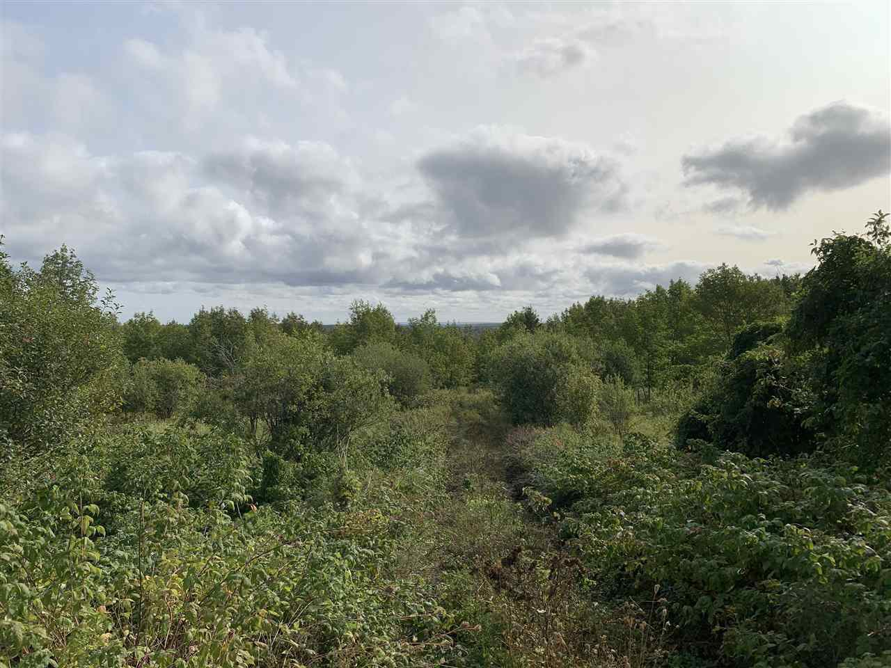 Main Photo: Lot Dan Fraser Road in Greenhill: 108-Rural Pictou County Vacant Land for sale (Northern Region)  : MLS®# 202020986