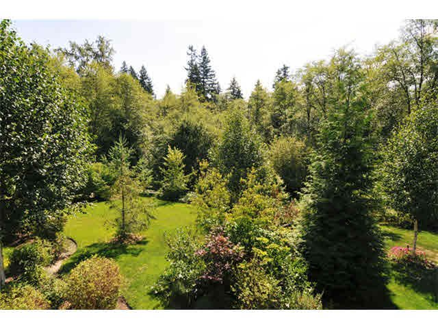 """Photo 16: Photos: 33 24185 106B Avenue in Maple Ridge: Albion Townhouse for sale in """"TRAILS EDGE"""" : MLS®# V1090011"""