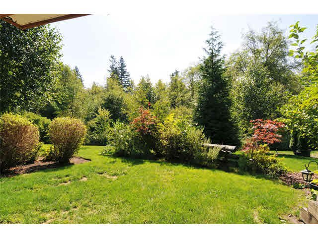 """Photo 17: Photos: 33 24185 106B Avenue in Maple Ridge: Albion Townhouse for sale in """"TRAILS EDGE"""" : MLS®# V1090011"""