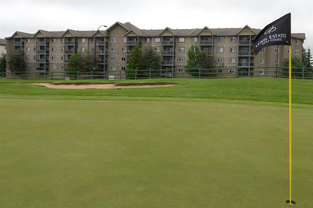 Main Photo: 410 279 SUDER GREENS Drive in Edmonton: Zone 58 Condo for sale : MLS®# E4163274