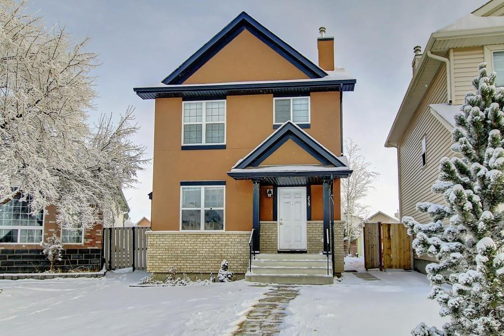 Main Photo: 239 SADDLEMEAD Road NE in Calgary: Saddle Ridge Detached for sale : MLS®# C4279947