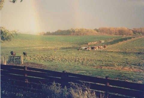 Photo 11: Photos: 22545 Lloyd Sdrd in Brock: Rural Brock House (2-Storey) for sale : MLS®# N3046124