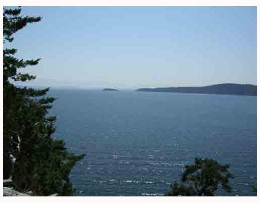 Main Photo: 17 TRUEWORTHY Road: Saturna Island Land for sale (Islands-Van. & Gulf)  : MLS®# R2013432