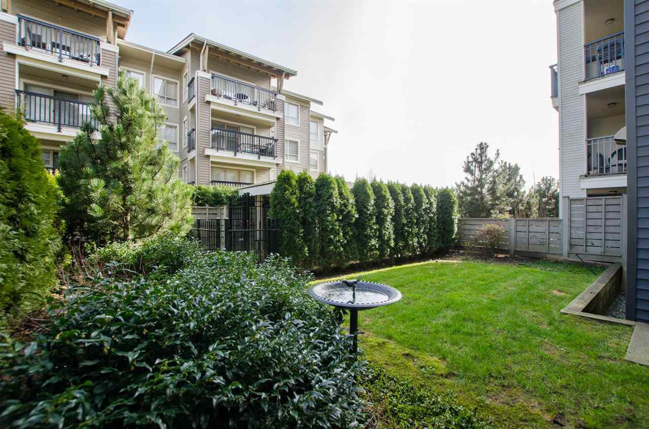 """Photo 13: Photos: A107 8929 202 Street in Langley: Walnut Grove Condo for sale in """"The """"Grove"""""""" : MLS®# R2142783"""