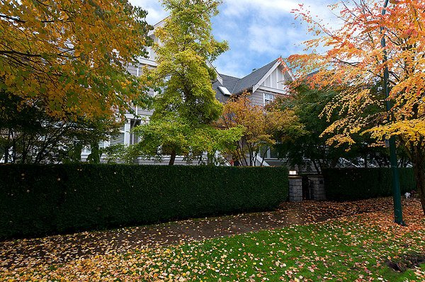 Photo 3: Photos: 5466 LARCH Street in Vancouver: Kerrisdale Townhouse for sale (Vancouver West)  : MLS®# V918064