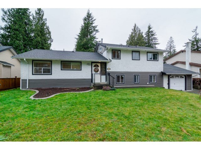 Main Photo: 4179 207A STREET in : Brookswood Langley House for sale : MLS®# R2020272