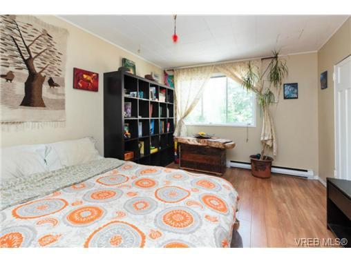 Photo 7: Photos: 2518 Shelbourne St in VICTORIA: Vi Oaklands House for sale (Victoria)  : MLS®# 730095