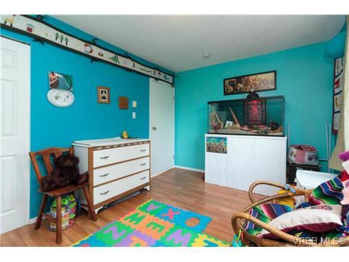 Photo 9: Photos: 2518 Shelbourne St in VICTORIA: Vi Oaklands House for sale (Victoria)  : MLS®# 730095