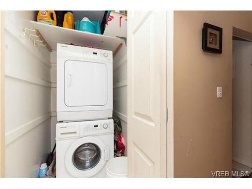 Photo 14: Photos: 2518 Shelbourne St in VICTORIA: Vi Oaklands House for sale (Victoria)  : MLS®# 730095