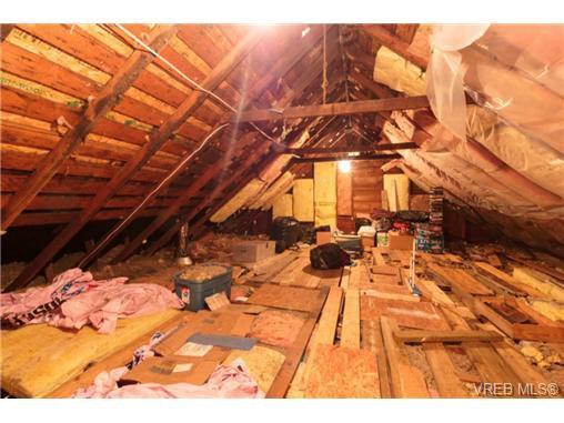 Photo 11: Photos: 2518 Shelbourne St in VICTORIA: Vi Oaklands House for sale (Victoria)  : MLS®# 730095