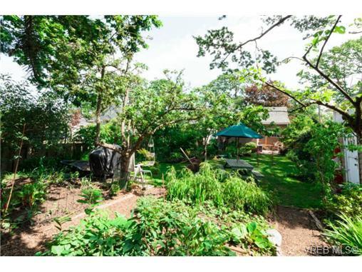 Photo 17: Photos: 2518 Shelbourne St in VICTORIA: Vi Oaklands House for sale (Victoria)  : MLS®# 730095