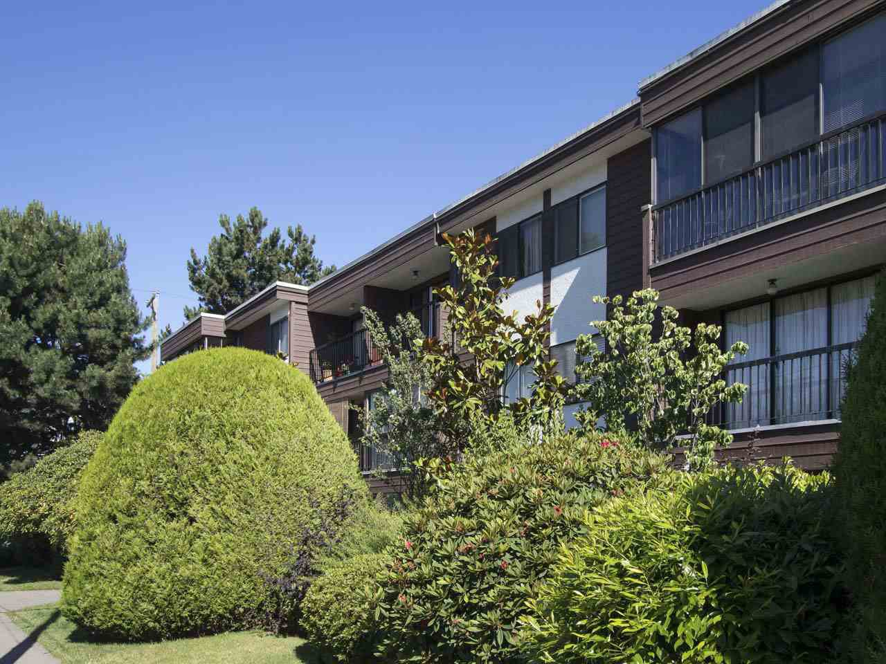 """Main Photo: 113 3787 W 4TH Avenue in Vancouver: Point Grey Condo for sale in """"Andrea Apartments"""" (Vancouver West)  : MLS®# R2085313"""