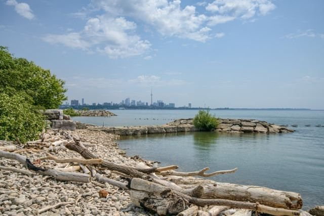 Main Photo: 716 5 Marine Parade Drive in Toronto: Mimico Condo for lease (Toronto W06)  : MLS®# W4156187