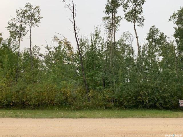 Main Photo: 670 Willow Point Way in St. Brieux: Lot/Land for sale : MLS®# SK824082