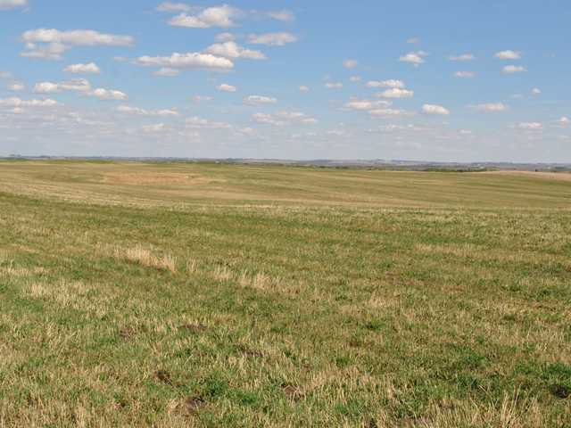 Main Photo: : Rural Mountain View County Land for sale : MLS®# C3641080