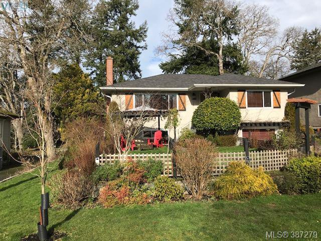 Main Photo: 1288 Tattersall Dr in VICTORIA: SE Cedar Hill Single Family Detached for sale (Saanich East)  : MLS®# 778179