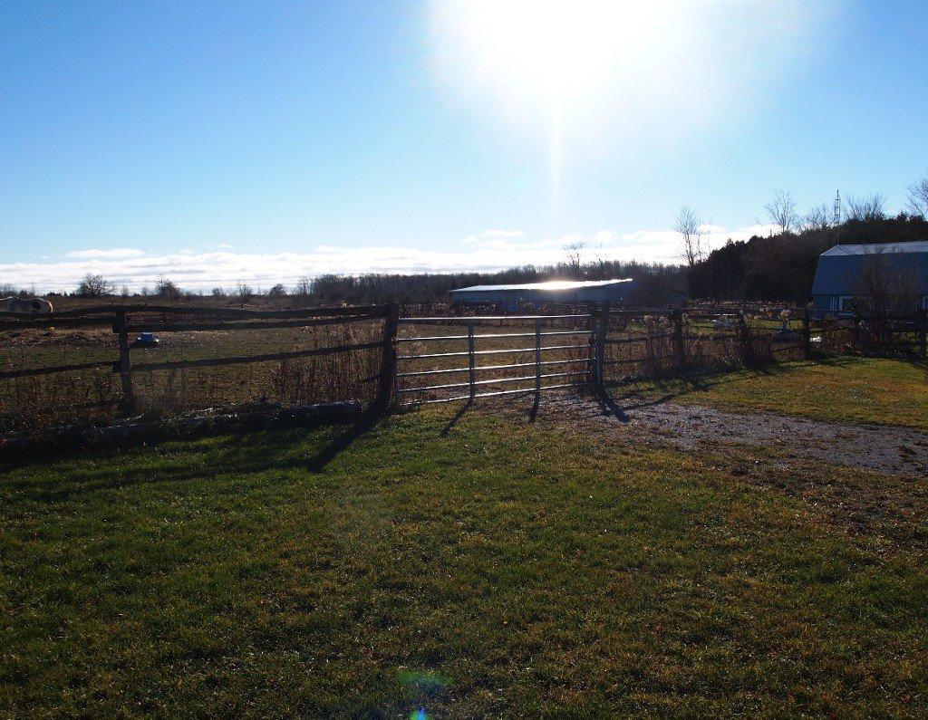 Photo 17: Photos: 547 Windmere Road: Woodville Freehold for sale (Kawartha Lakes)  : MLS®# X3661427