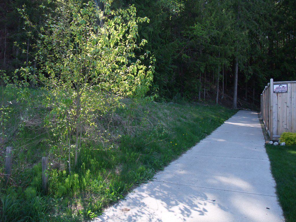 Photo 7: Photos: 4530 NE 72 Avenue in Salmon Arm: Canoe Land Only for sale : MLS®# 10111581