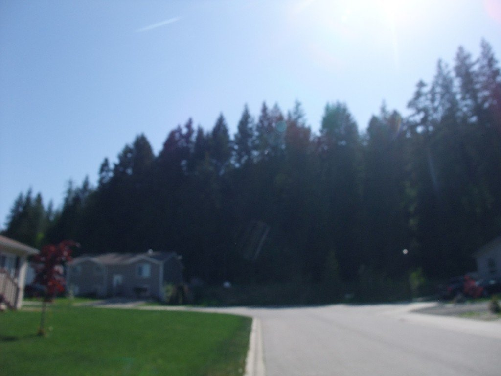 Photo 12: Photos: 4530 NE 72 Avenue in Salmon Arm: Canoe Land Only for sale : MLS®# 10111581