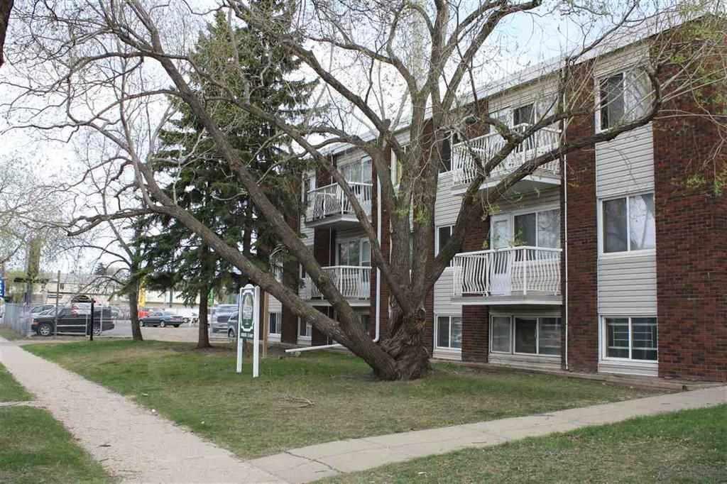Main Photo: 5 10635 114 Street in Edmonton: Zone 08 Condo for sale : MLS®# E4199855