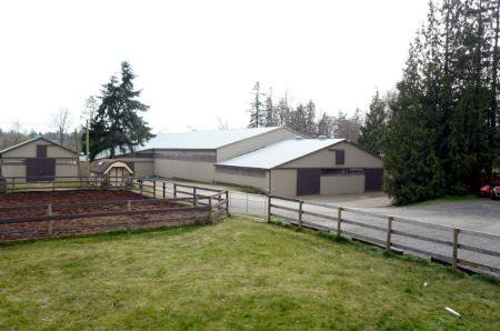 Main Photo: Equestrian Center With 2 Homes On Prime 5.65 Acres