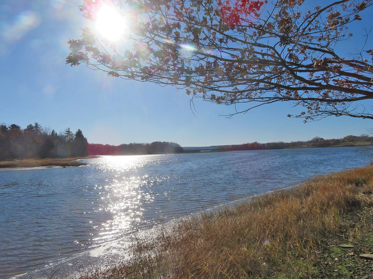 Main Photo: 18-01 MacLean Lane in Pictou County: 108-Rural Pictou County Vacant Land for sale (Northern Region)  : MLS®# 202100331