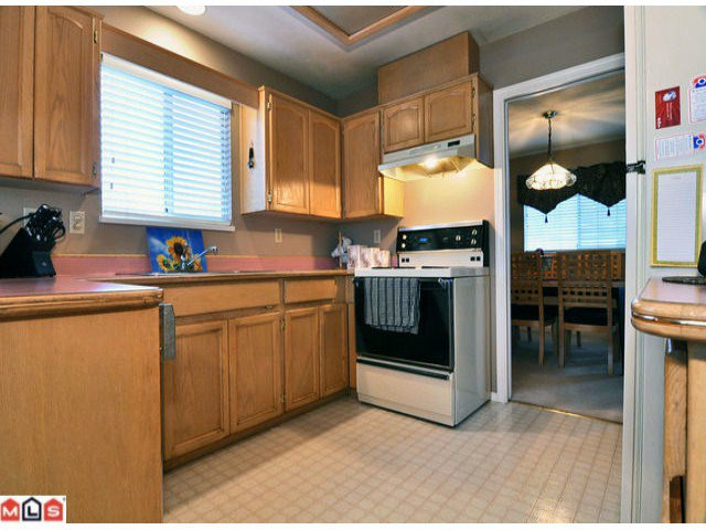 Photo 4: Photos: 30990 Southern Drive in Abbotsford: Abbotsford West House for rent