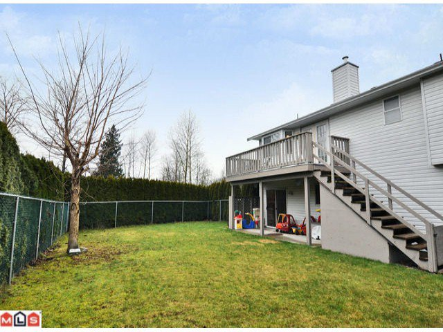Photo 10: Photos: 30990 Southern Drive in Abbotsford: Abbotsford West House for rent