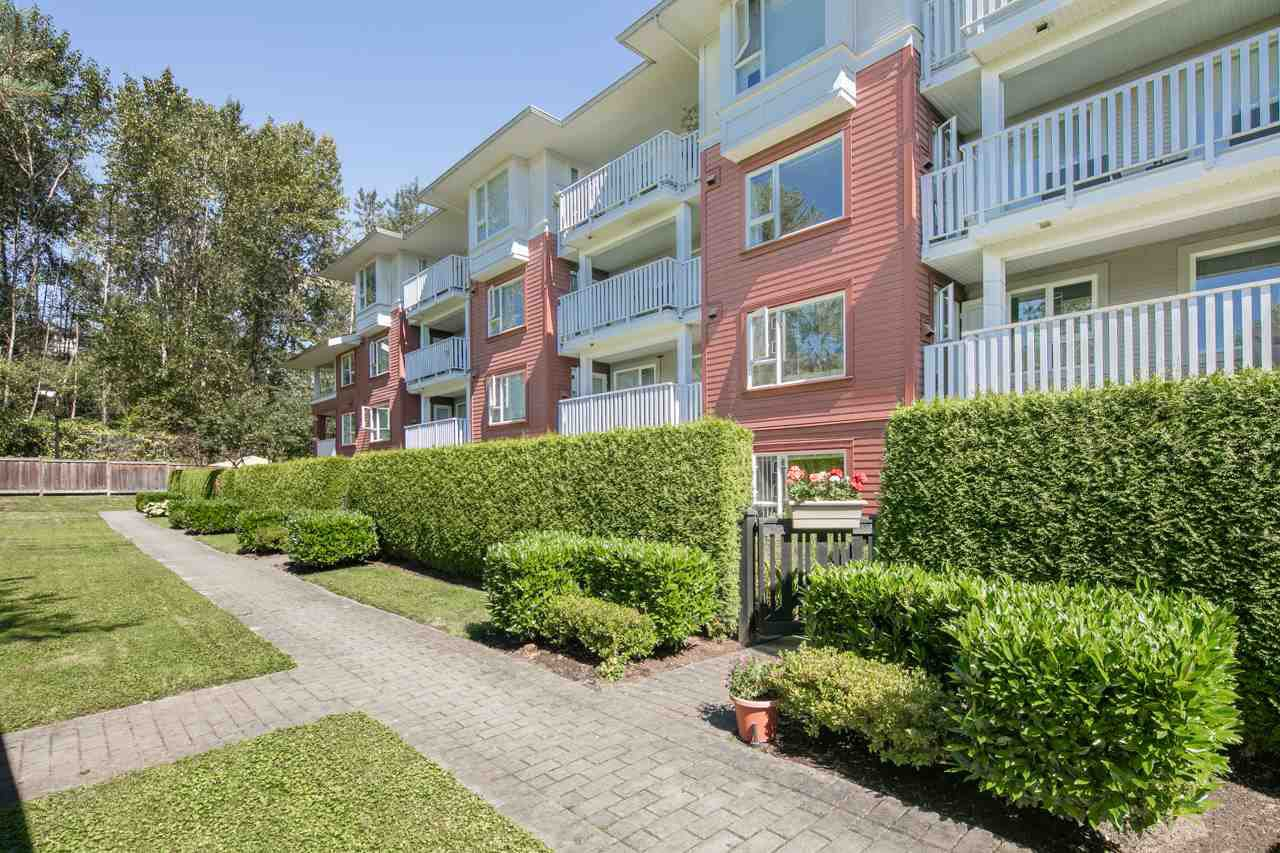Photo 16: Photos: 103 4783 DAWSON STREET in Burnaby: Brentwood Park Condo for sale (Burnaby North)  : MLS®# R2100540