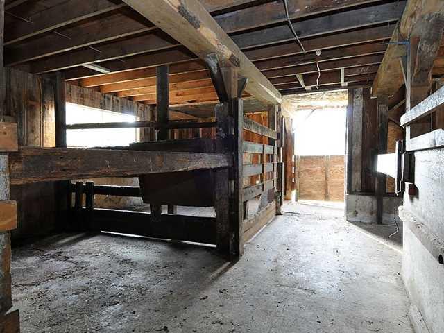 Photo 19: Photos: 26692 112TH AV in Maple Ridge: Thornhill House for sale : MLS®# V1040269