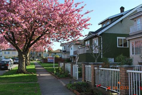Photo 3: Photos: 4769 BRUCE ST in Vancouver: Victoria VE House for sale (Vancouver East)  : MLS®# V1000138