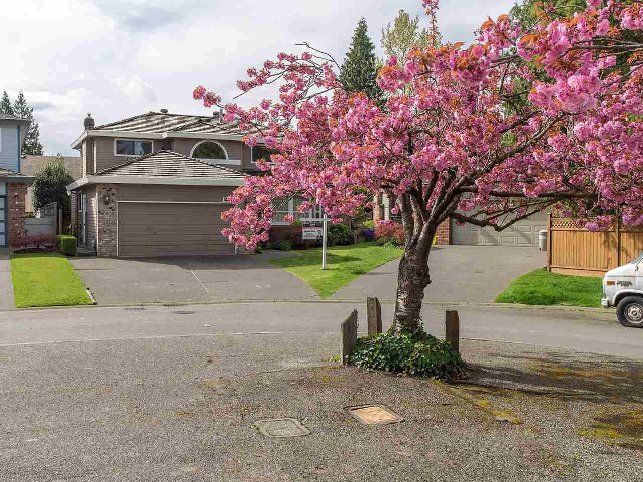 Main Photo: 6567 SUNWOOD DRIVE in Delta: Sunshine Hills Woods House for sale (N. Delta)  : MLS®# R2052481