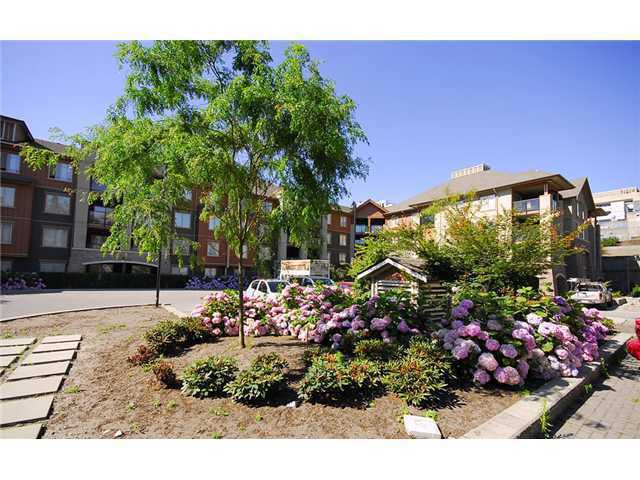 Main Photo: 1307 248 Sherbrooke St. in New westminster: Condo for sale : MLS®# V946322