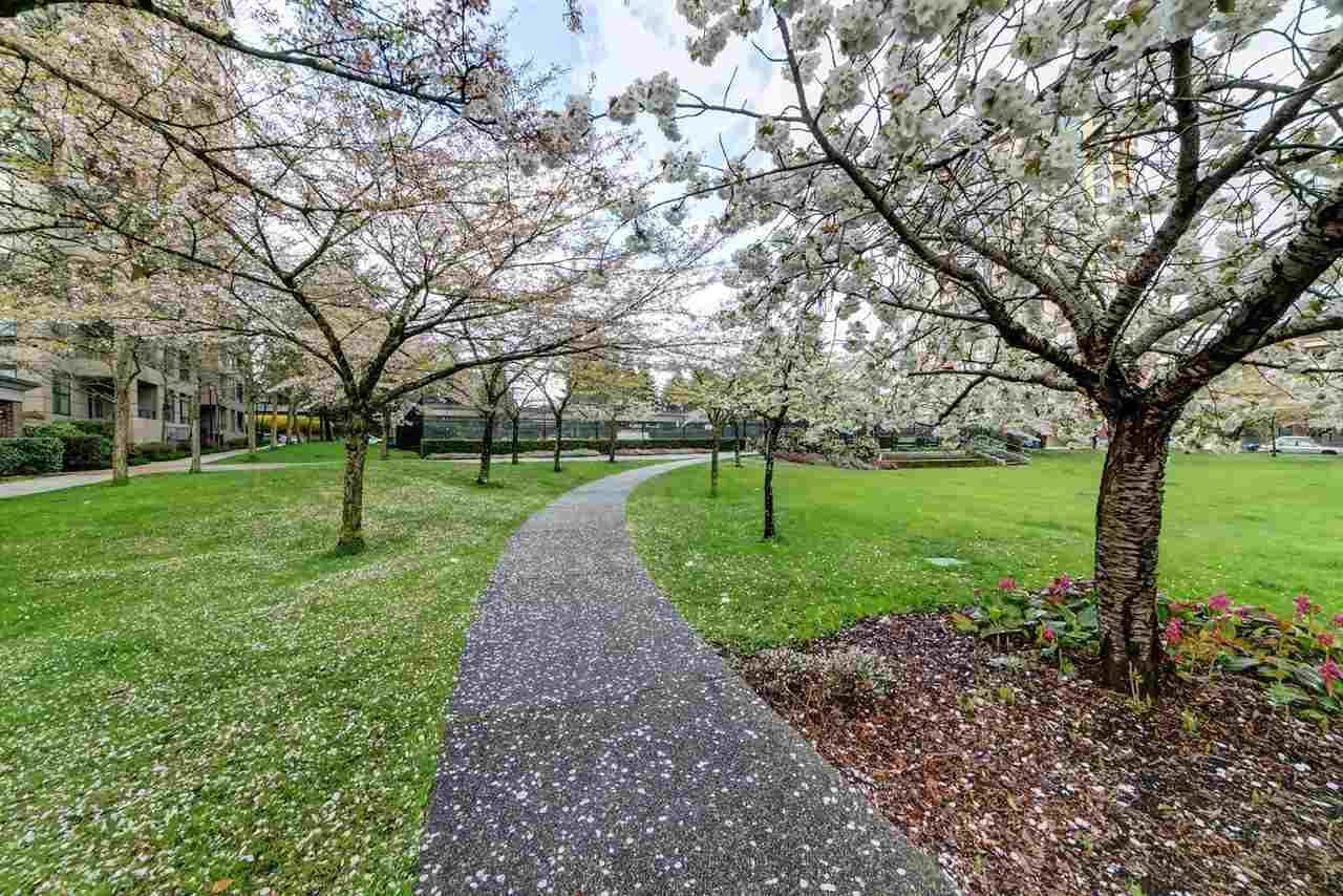 Main Photo: 302 3437 KINGSWAY in Vancouver: Collingwood VE Condo for sale (Vancouver East)  : MLS®# R2427879