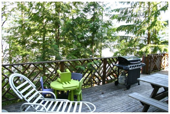 Photo 15: Photos: 3 Aline Hill Beach in Shuswap Lake: The Narrows House for sale : MLS®# 10152873