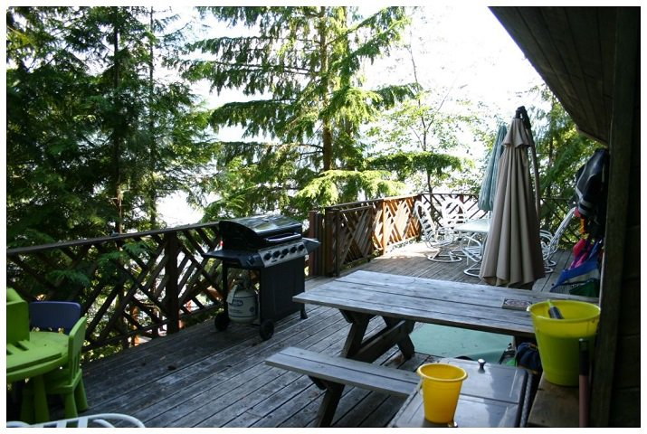 Photo 14: Photos: 3 Aline Hill Beach in Shuswap Lake: The Narrows House for sale : MLS®# 10152873