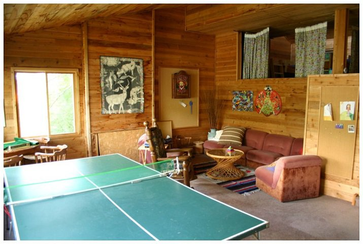 Photo 27: Photos: 3 Aline Hill Beach in Shuswap Lake: The Narrows House for sale : MLS®# 10152873