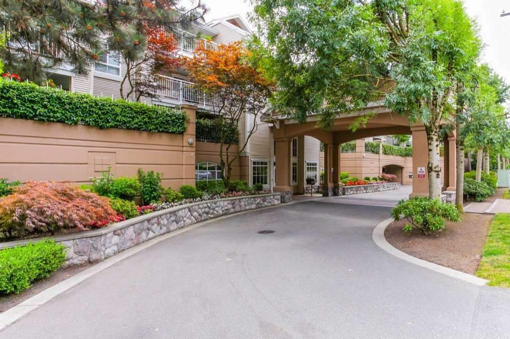 Main Photo: 304 19750 64 AVENUE in Langley: Willoughby Heights Condo for sale : MLS®# R2265921